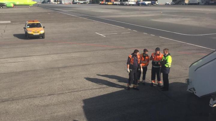Разогнавшийся до 233 км/ч самолёт экстренно отменил взлёт в аэропорту Толмачёво