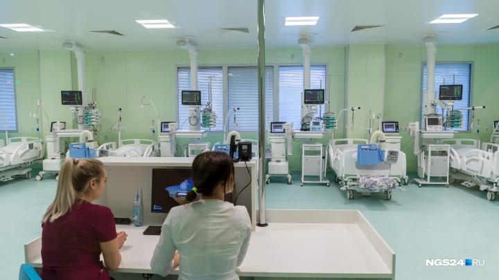Ожоги, пневмония и травмы после драк: врачи рассказали о первых пациентах этого года