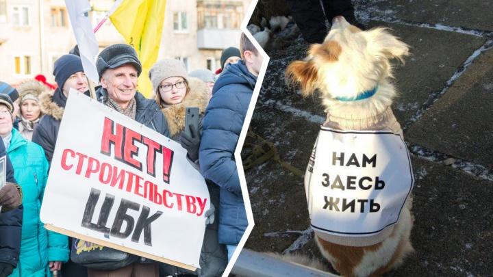 Не в то время и не в том месте: ярославцам назвали неправильные координаты митинга против стройки ЦБК