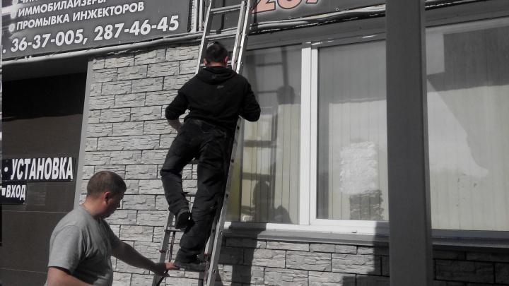 Пятеро новосибирцев с лестницей спасли воробья в торговом центре
