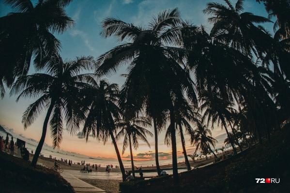 Как оказалось, Новый год под пальмами для тюменцев — привычное дело
