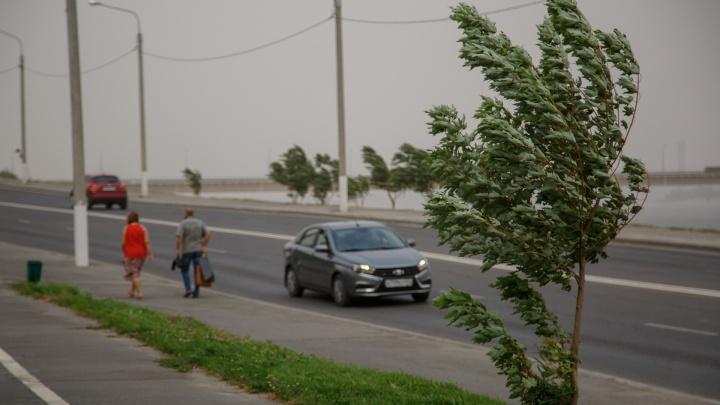 Волгоград накроет грозовыми дождями при сильном ветре до18 м/с