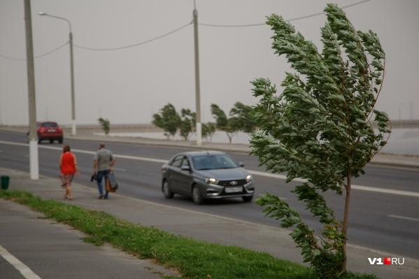 Днём в Волгограде усилится ветер и пройдёт грозовой ливень