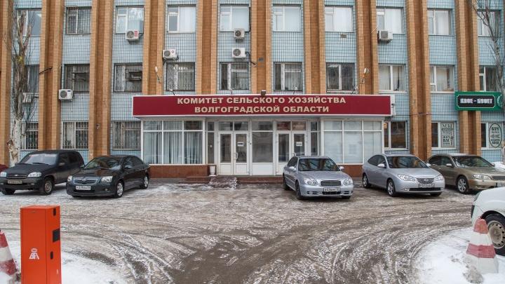 Вице-губернатор лишился захваченной в центре Волгограда парковки для чиновников