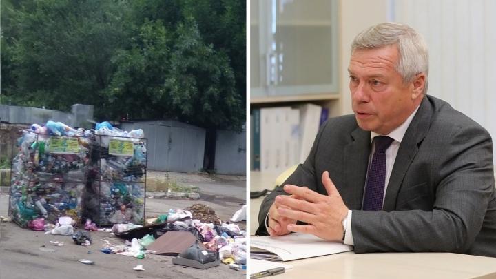 Губернатор призвал дончан «перестать производить мусор»