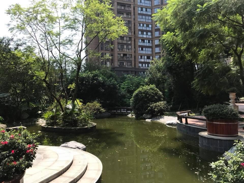 Двор дома в ЖК в Чэнду, где живёт Татьяна