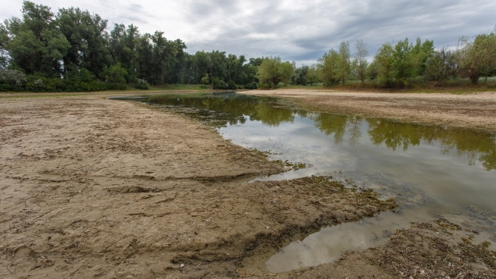 В Волгоградской области за три года расчистят ерик Верблюд