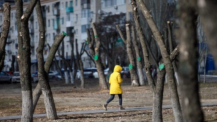 В Волгограде похолодает до -12°С