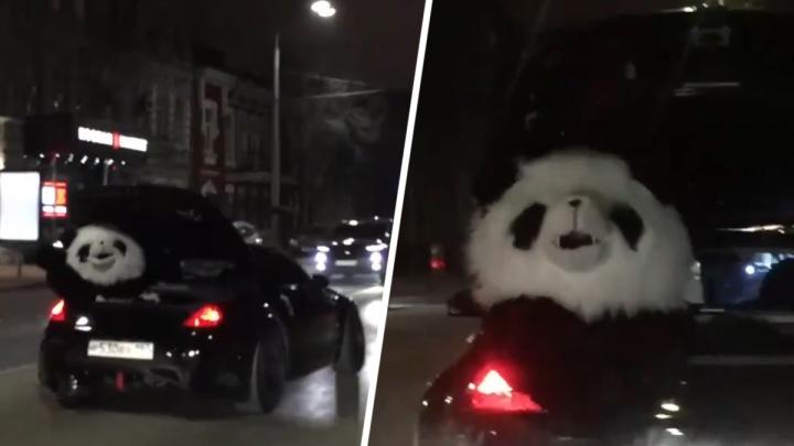 По ростовским улицам в кабриолете каталась панда
