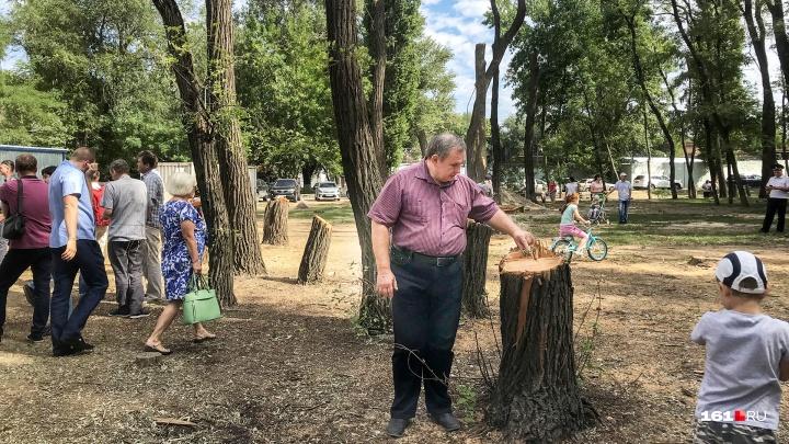 Вырубку деревьев в парке «Осенний» официально приостановили до 15 августа