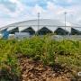 Гид болельщика: 10 вопросов про матчи на «Самара Арене»