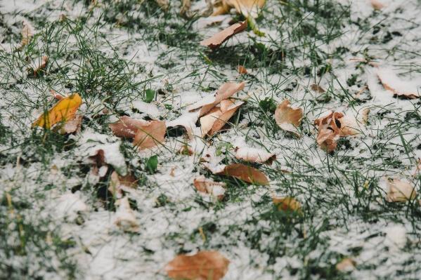 Когда ждать первый снег? Читайте ниже