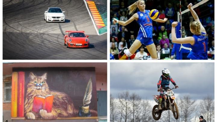 Выходные в Нижнем Новгороде: «Библионочь», «Жавората» и гонки на автомобилях и мотоциклах