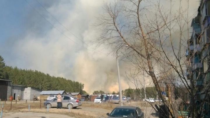 Дым стеной: под Екатеринбургом спасатели тушат природный пожар