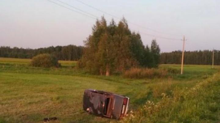Машина вылетела с дороги и перевернулась: погибла женщина
