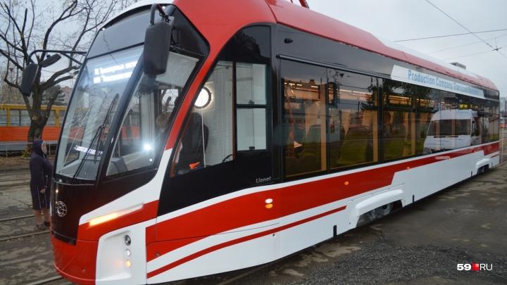 Мэрия Перми выбрала поставщика новых трамваев, но заключать договор пока запрещает УФАС