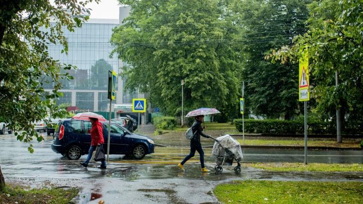 Ярославль зальёт дождями: на город надвигаются грозы с сильными ветрами