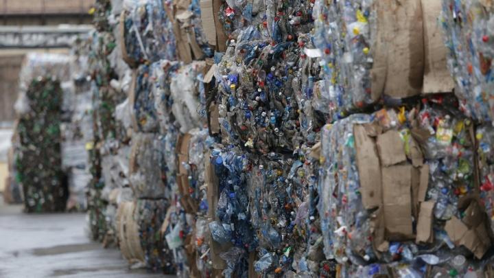 «Ради чего задумана вся реформа с отходами»: в Челябинске ускорят переход на раздельный сбор мусора