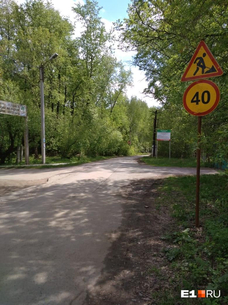 На Шарташе начали рубить деревья ради шестиметровой дорожки для пешеходов и велосипедистов