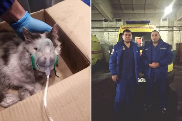 Животное было без сознания, когда его нашел пожарный