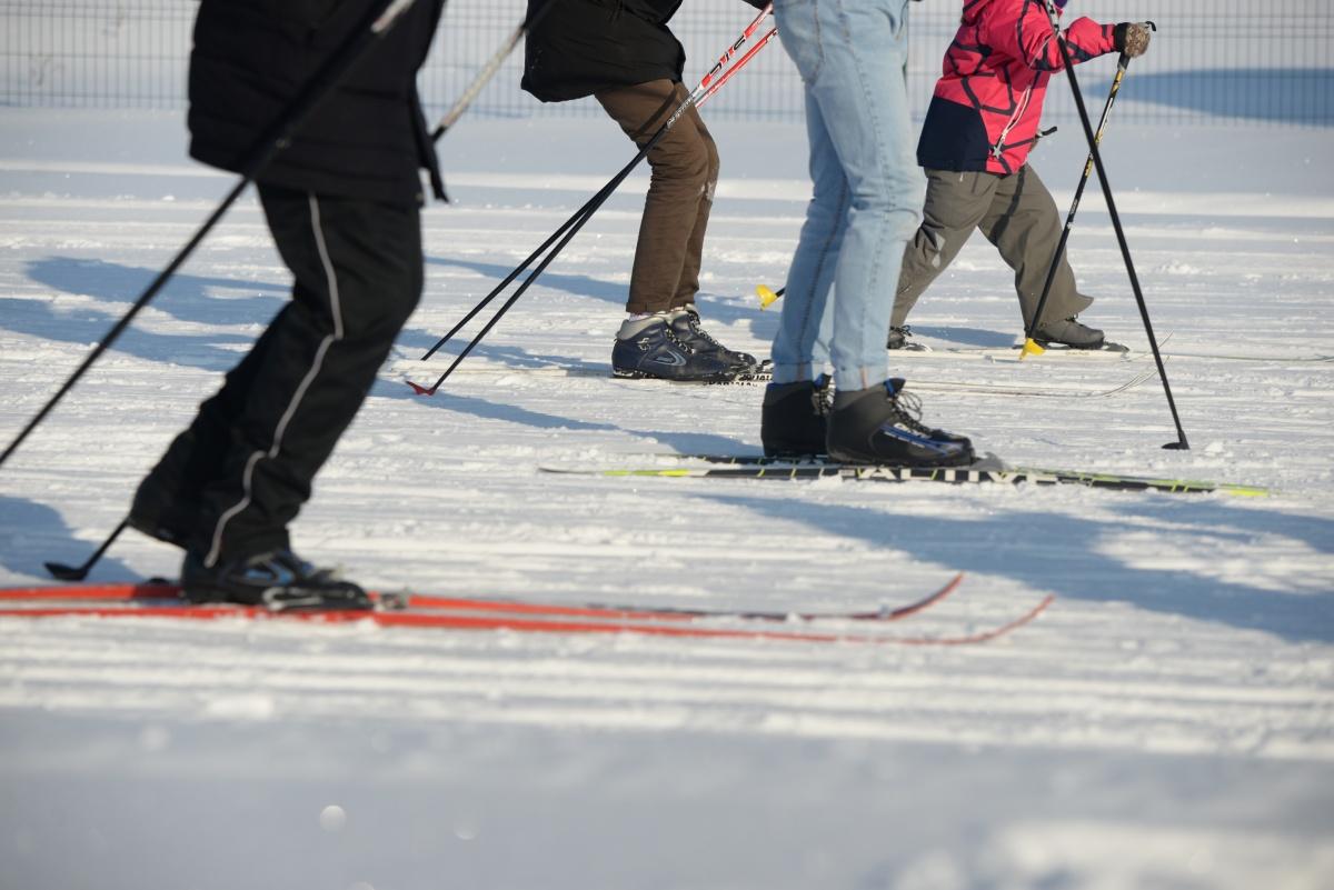 В ЦПКиО проложили настоящие лыжные трассы