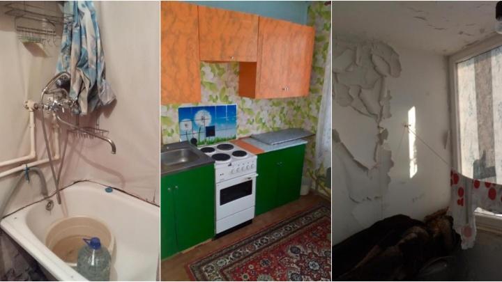 Сними её, если осмелишься. Рассматриваем жуткие интерьеры 15 съёмных квартир в Тюмени