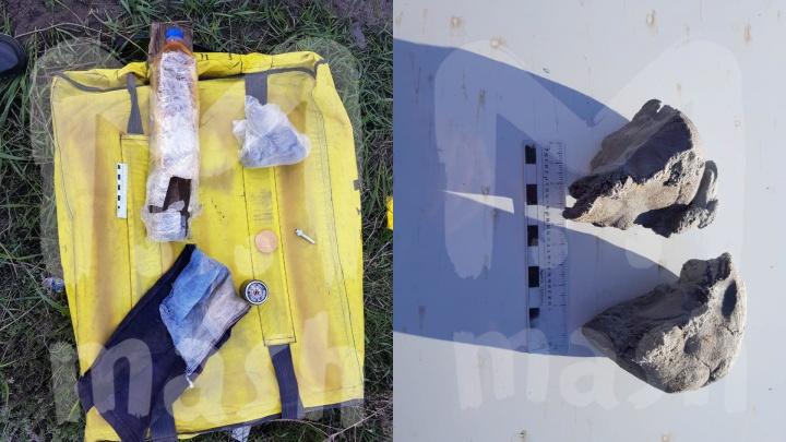 В грузовом поезде из Ростовской области обнаружили бомбу