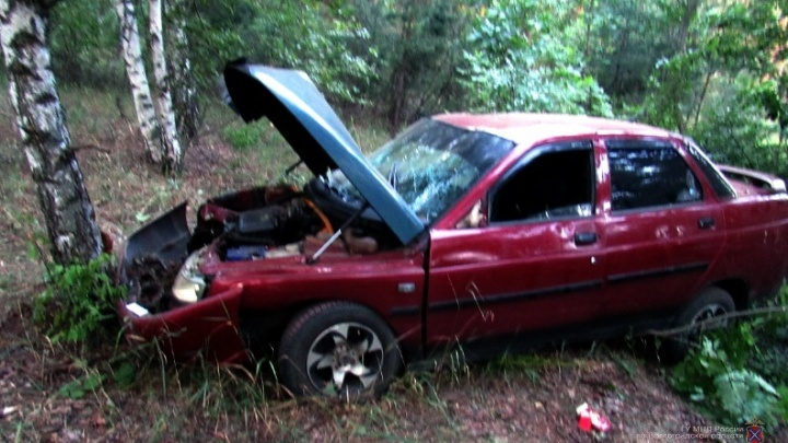 Берегись автомобиля: в Волгоградской области два молодых водителя пробили деревья