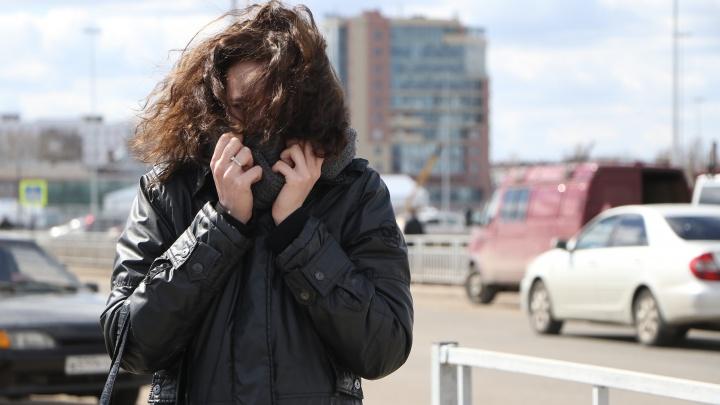 МЧС предупреждает: в Нижнем Новгороде ветер станет еще сильнее