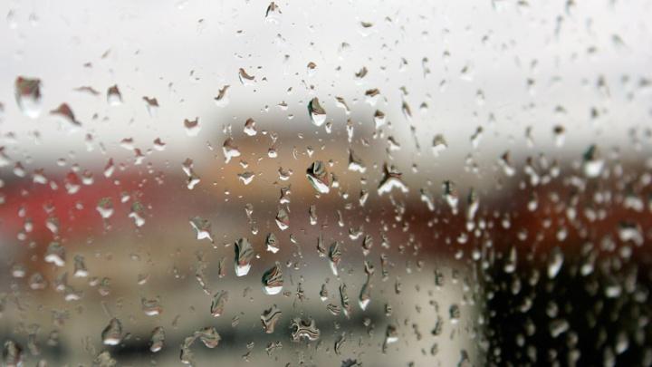 Новосибирские синоптики рассказали, когда закончатся дожди
