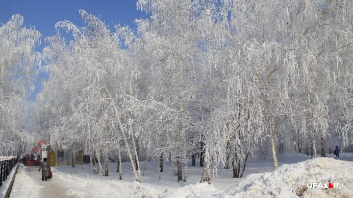 Синоптики предупредили о морозах: на Башкирию надвигается полярный антициклон