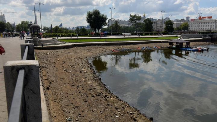 В Городском пруду в центре Екатеринбурга понизят уровень воды