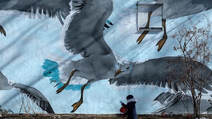 Фотограф 13 лет снимала улицыЕкатеринбурга, Москвы и Питера: публикуем ее работы
