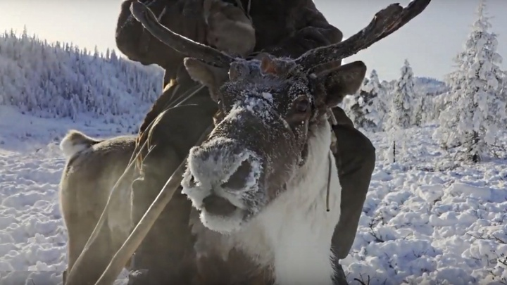 Документалист повторил путь казака через плато Путорана и снял фильм об этом