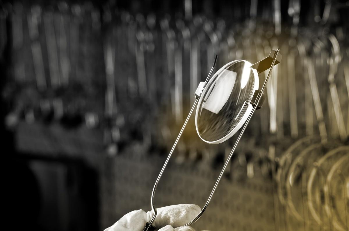 Разглядеть весну с японской точностью: в «Золотом пенсне» стартовали Дни оптики Seiko
