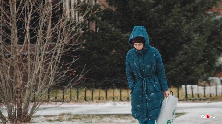 Похолодание и снегопады. Рассказываем о погоде на следующей неделе в Тюмени