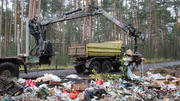 В Шенкурском районе ликвидируют незаконные свалки: там намусорили на 250 грузовых автомашин