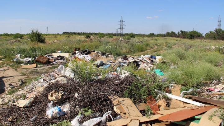 Волгоградским чиновникам пришлось узнать о гигантской свалке в пойме Мокрой Мечётки