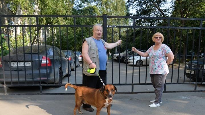 Дворовые интриги: жильцы девятиэтажки на Бажова разделили дом глухим забором на две половины