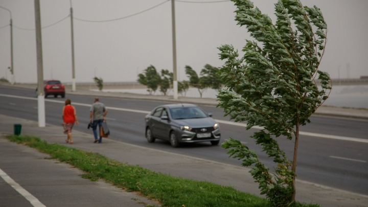 В Волгограде ожидается сильный ветер и грозовой ливень