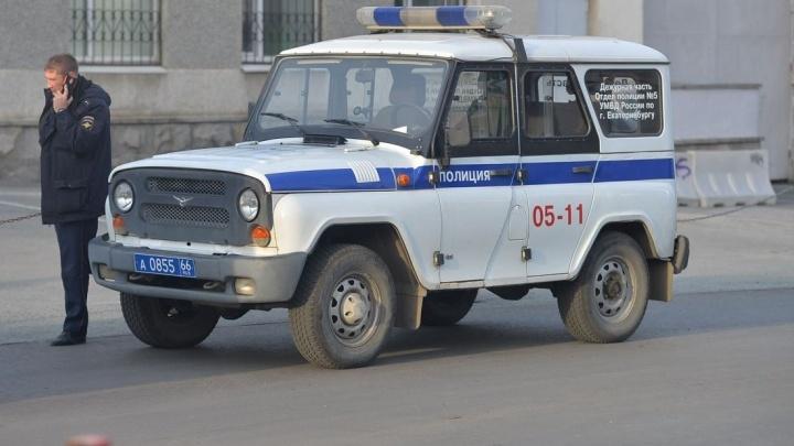 Полиция бросила 250 человек на поиски двух мужчин, которые надругались над девочкой на Уктусе