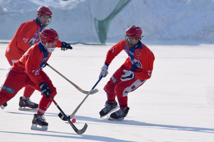 Новосибирские хоккеисты — на восьмом месте в турнирной таблице чемпионата России