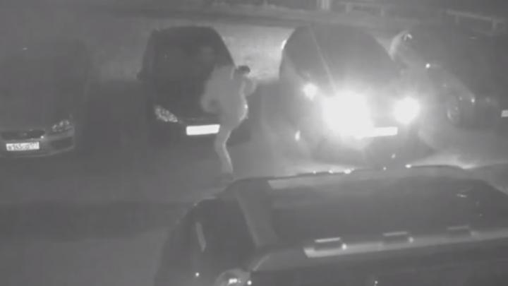 «Ущерб — более 60 тысяч рублей»: ярославцы пожаловались на соседа, который покалечил их автомобили