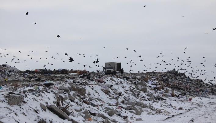 В Самаре опубликовали списки граждан, которым предоставят скидки на оплату вывоза мусора