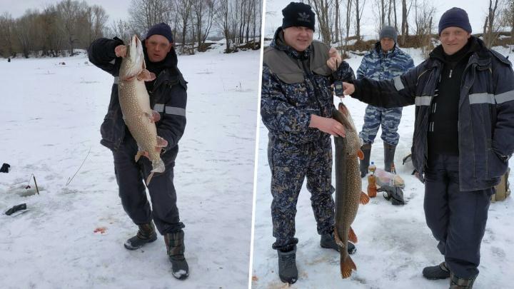 Самарский рыбак поймал на реке Татьянке гигантскую щуку