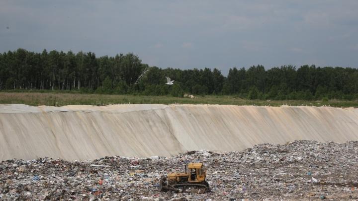 Вывозить не запрещали: мусор челябинцев продолжат отправлять в Полетаево, несмотря на решение суда