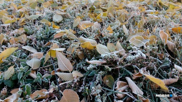 МЧС на каждый день: в ведомстве снова предупредили омичей о заморозках
