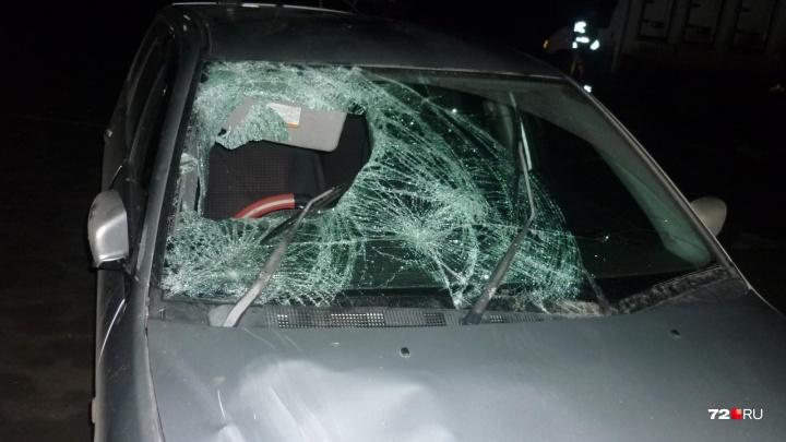 Не дошел до перехода: на трассе Курган — Тюмень водитель Mitsubishi насмерть сбил мужчину