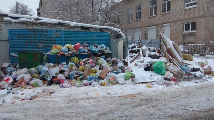 «Эту помойку не убирают уже месяц»: новая волгоградская концессия вывезла мусор на камеру