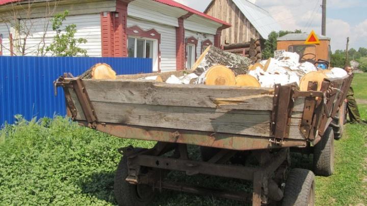 Зауральца поймали при перевозке незаконно спиленных берез
